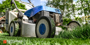 Spring Cleaning for your Back and Front Yards