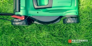 Essential Tools For Caring For Your Yard