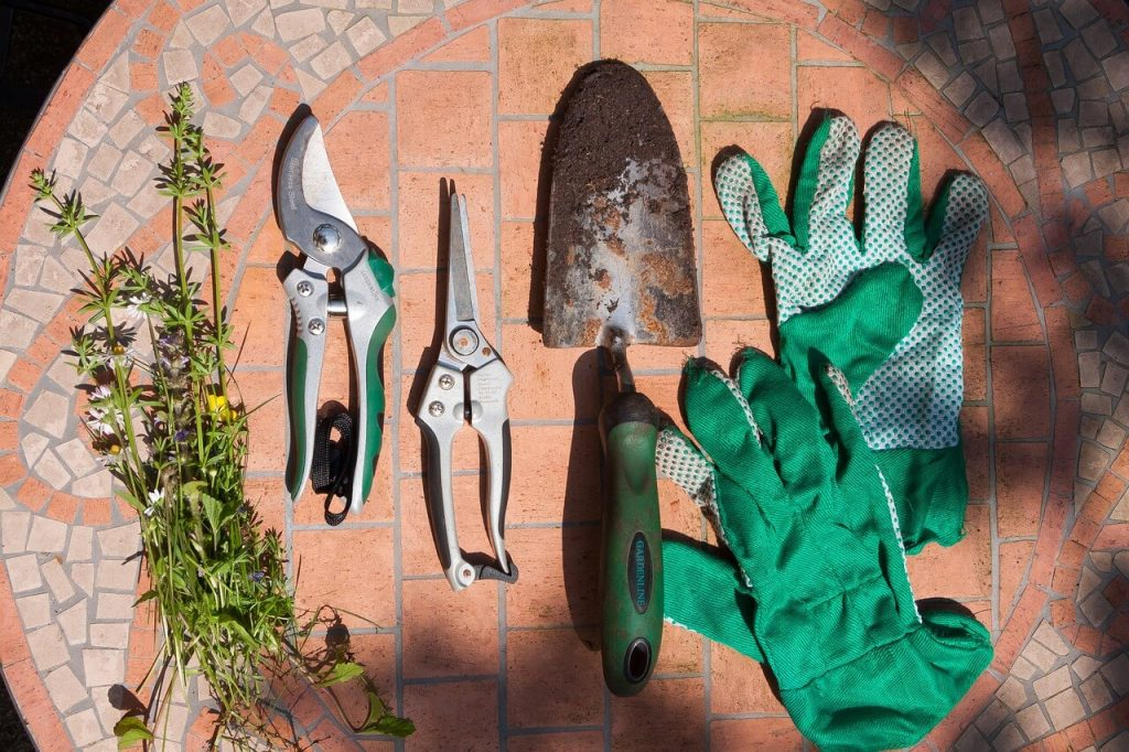 trowels, secateurs, and work gloves should all be part of your yard care kit