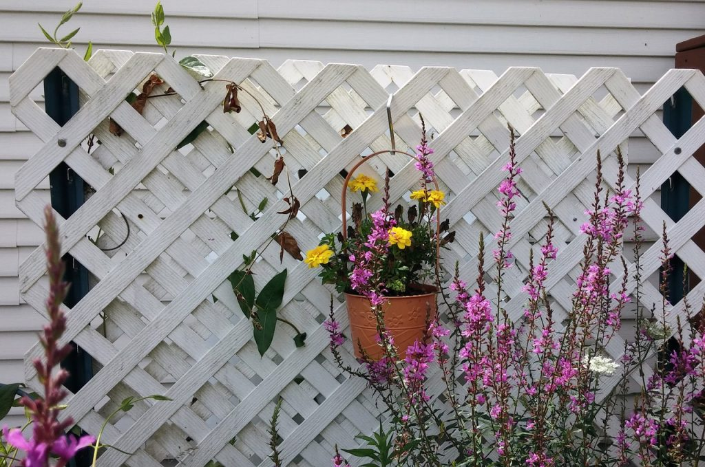 a lattice fence can help add privacy