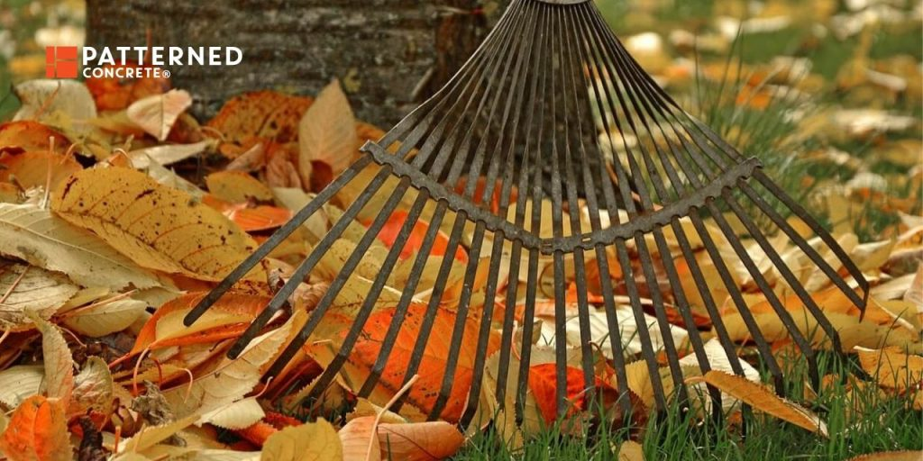 how to care for your yard in fall