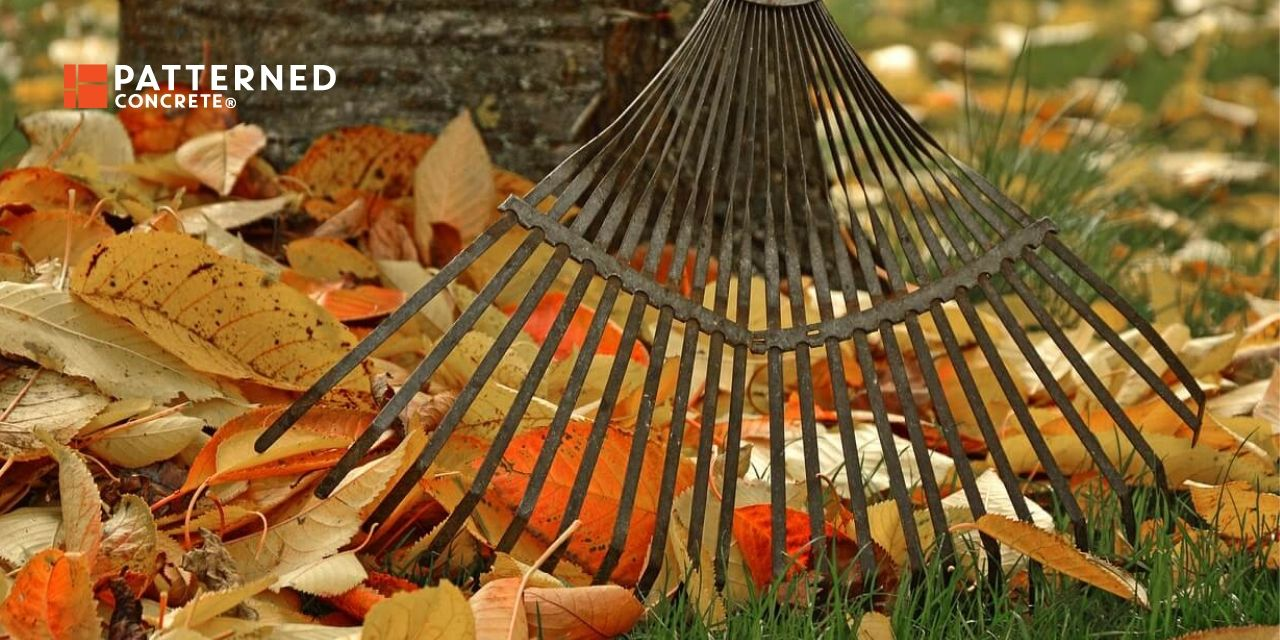 11 Backyard Cleanup Tips for Fall
