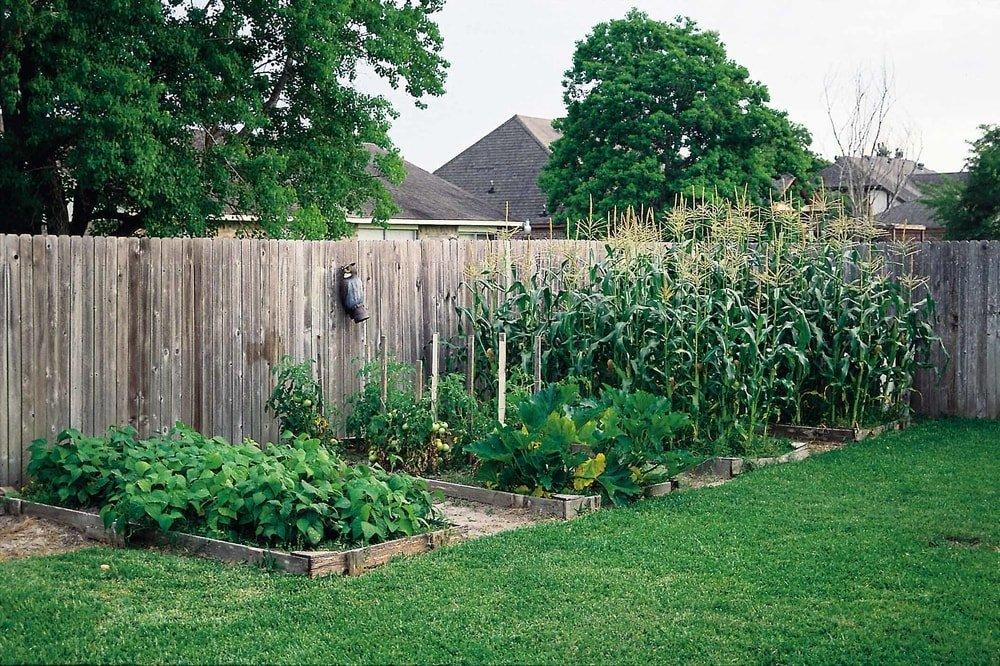 fence_garden